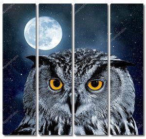 Орел-сова, Бубо-бубо в ночи