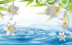 Большие белые лилии над голубой водой, вода капает