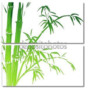 Акварель ветви бамбука, изолированные на белом фоне. Векторные иллюстрации