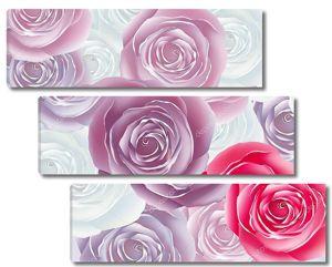 Бутоны роз разных цветов