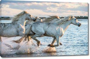 Белые лошади бегущие по воде