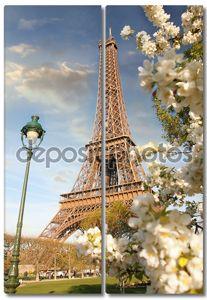 Эйфелева башня в весеннее время в Париже, Франция.