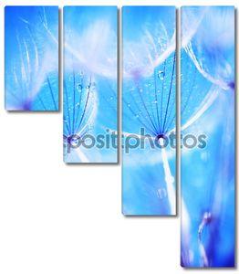 Мягкие одуванчика цветы