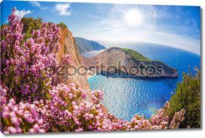 Навагио Бич с кораблекрушений и цветы на фоне заката, остров Закинтос, Греция