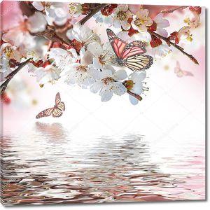 Бабочки на цветах над водой