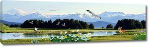 Олени и чайки на озере