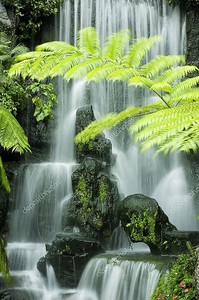 Японский сад водопады