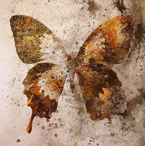 Бабочка на поверхности из смешанных красок