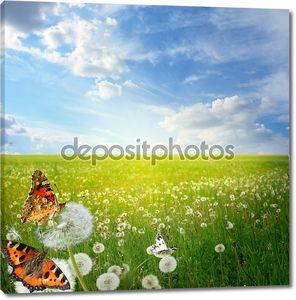 Красивый пейзаж с красочные бабочки
