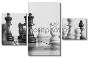 шахматными