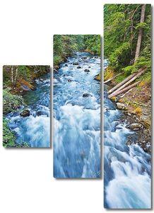 Красивая река в национальном парке горы Райнер