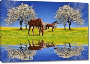 Цветущая вишня с лошадьми