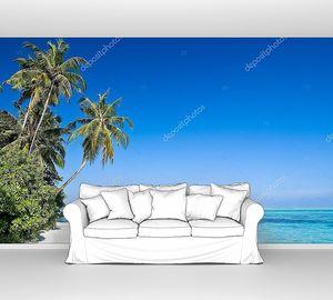 Пальмы на островном пляже