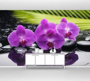 Орхидея с камнями дзен и пальмовым листом