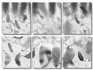 Монохромные перья