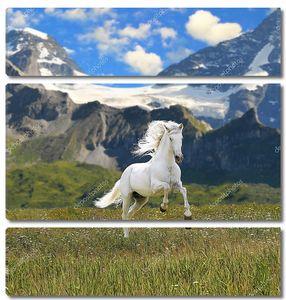 Белая лошадь в долине