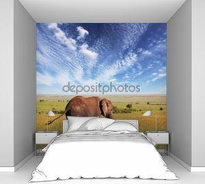 Слон и слоненок