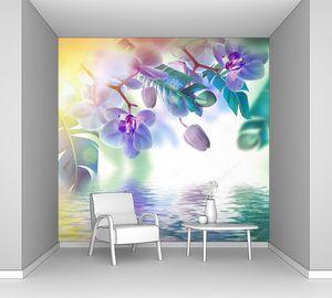 Красивые тропические орхидеи