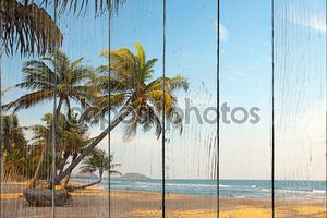 Экзотические, одинокий пляж с пальмами и океан