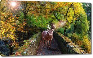 Олень на каменном мосту