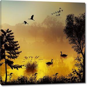 Лебеди в сумерках на озере