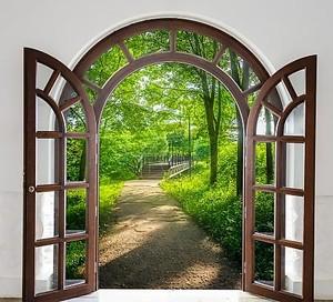 Окно в сад