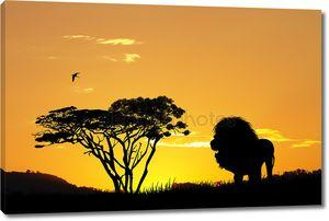 Лев силуэт на закате