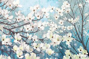 Буйный цвет сакуры