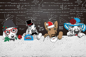 Собаки у школьной доски
