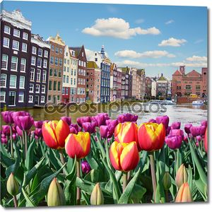 Beautiful landscape of tulips on the background of the channel a