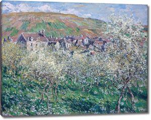 Моне Клод. Сливовые деревья в цвету на Ветей, 1879