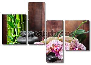 Фон с орхидеей и бамбуком