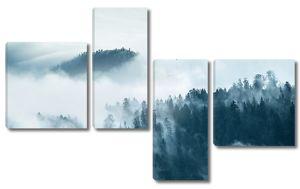 Туман над хвойным лесом