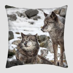 пара волков в зимний снег