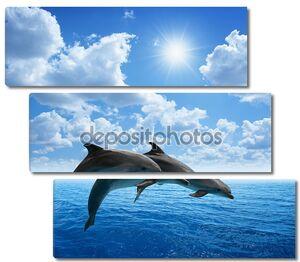Прыжки дельфинов на фоне облачного неба