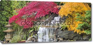 Водопад двора с японский клен деревья осень Панорама