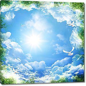 Высокое небо с голубями