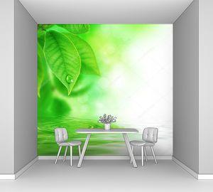 Яркая зелень над водой