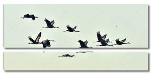 Стая журавлей летит на рассвете
