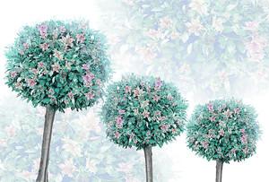 3 дерева шара