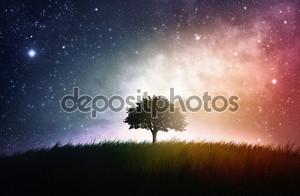 Одно дерево космический фон