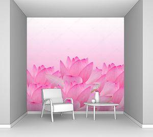 Розовая водяная лилия