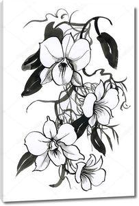 Эскиз с цветами орхидеи
