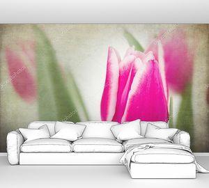 Тюльпан в приглушенном свете