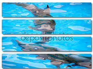 Абстрактный фон с дельфинами под водой