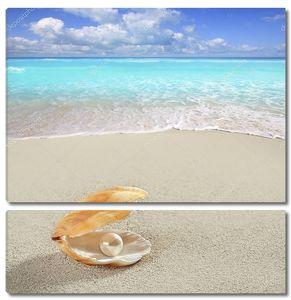 Карибский жемчужина на тропический пляж с белым песком оболочки