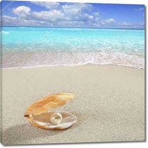 Жемчужина в раковине на пляже