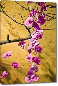 Дерево розовой сакуры