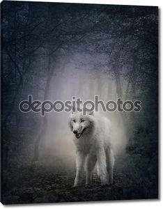 Белый волк в лесу ночью