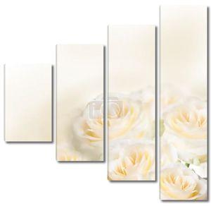 Нежно-белые розы